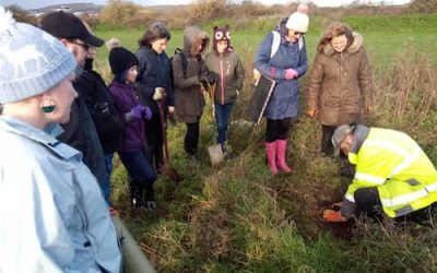 Warden Park Academy getting ready for tree planting – Call for Volunteers