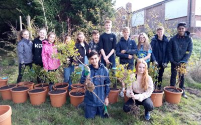 Successful Crowdfunder, organised by TreeAction, raises £7365 for Warden Park Academy's Tree Planting and Garden Project in 2021