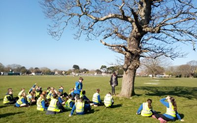 Class of 30 Buckingham Park Primary School students plant Chestnut Trees in their local park – Event organised by TreeAction